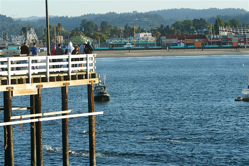 Spectators can follow swimmers along the pier