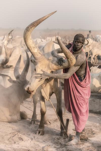 Mundari and their beasts