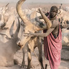 Mundari and their beasts