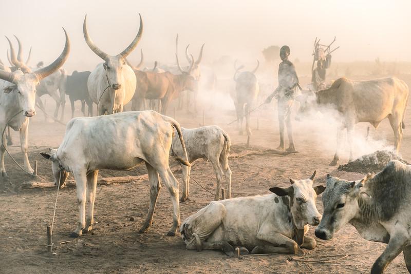 Life in the Mundari world