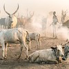 Life in the Mundari world
