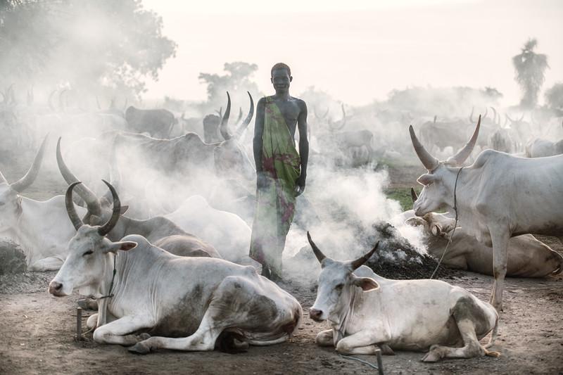 Smoke and dust and dinka