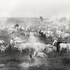 Mundari camp at Terekeka, White Nile