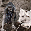 Mundari girl collecting dung