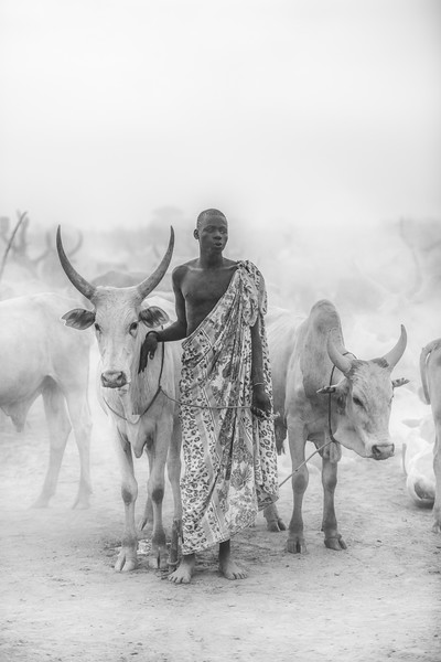 Mundari man and cows, Terekeka