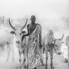 Mundari man and cows, Terekeka