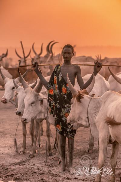 Mundari cattle herder