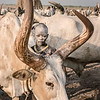 Portrait of a Mundari boy