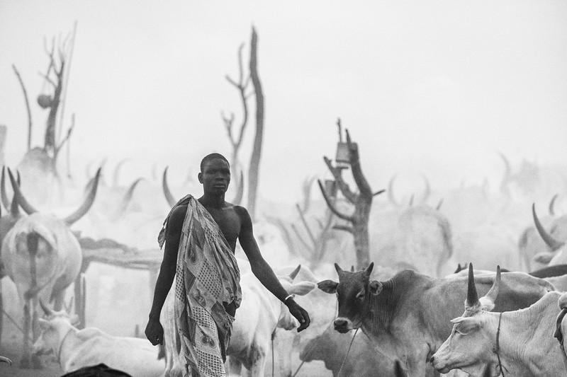 Dusk walk at the camp