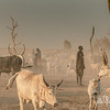 Mundari cattle camp.