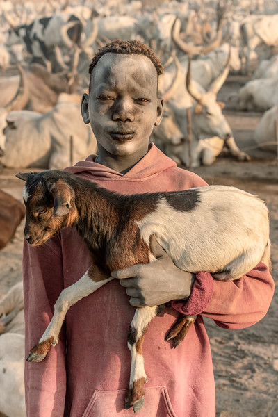 Goat in hand