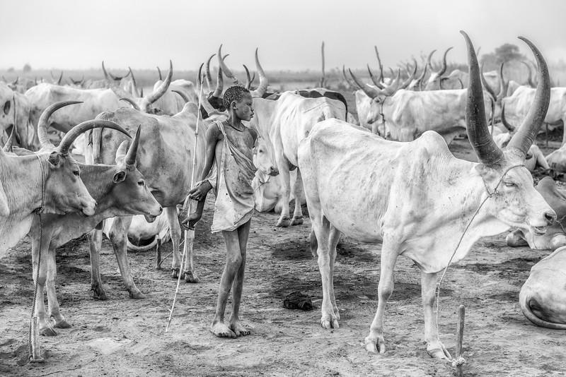 Mundari In the midst