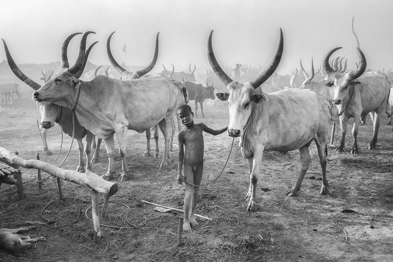 Yes, they are bigger than me, Mundari boy