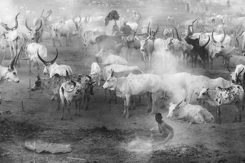 Mundari cattle camp at Terekeka, White Nile
