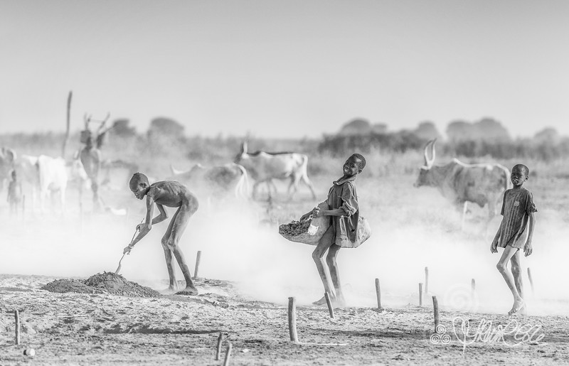 Mundari boys at work, Terekeka
