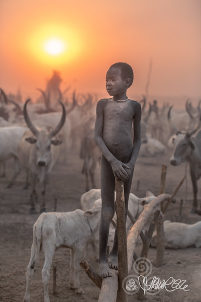 Standing with his Ankoli Watusi cattle