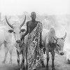 Communicating with his cows, Terekeka