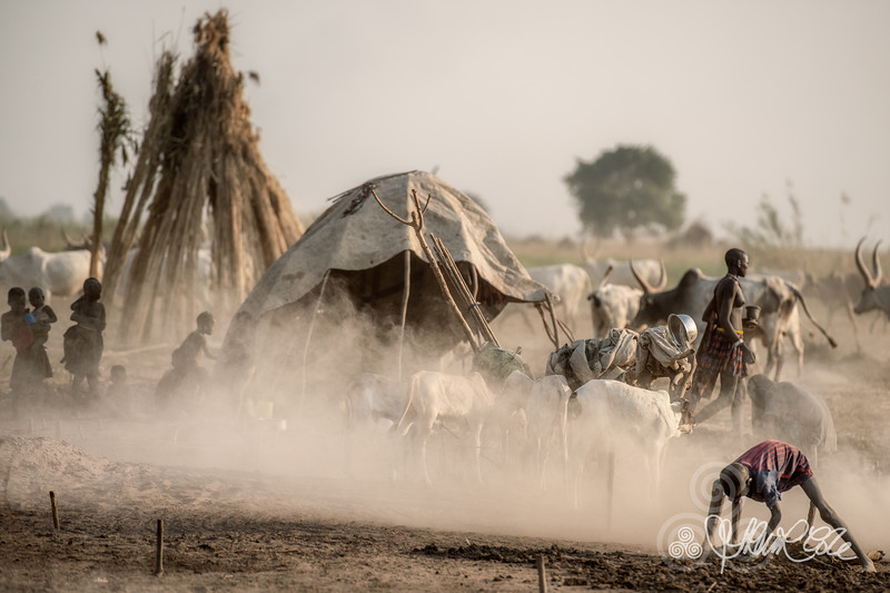 Dust and smoke in the camp