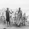 Mundari life on the Nile