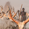 Through the horns of the Ankosi watuli