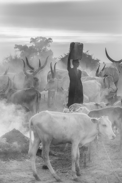 The Dinka water carrier