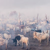 The cattle camp of the Mundari
