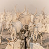 Two boys and the Ankoli Watusi  cattle