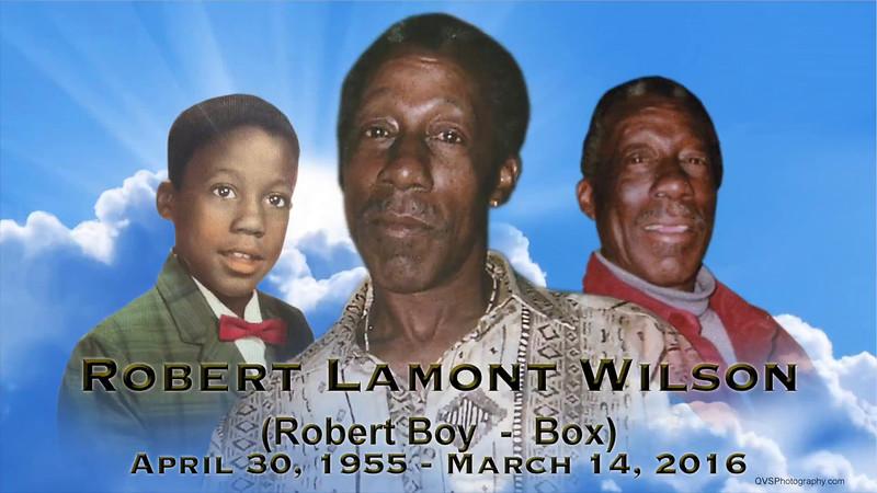 Robert Lamount Wilson