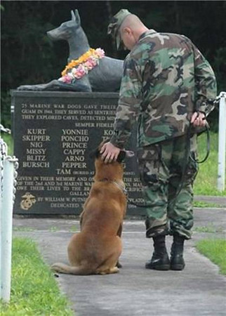 Tribute to Marine Sentry Dogs KIA