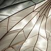 White Silk Parachute