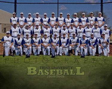 Baseball 2008-09 8 x 10