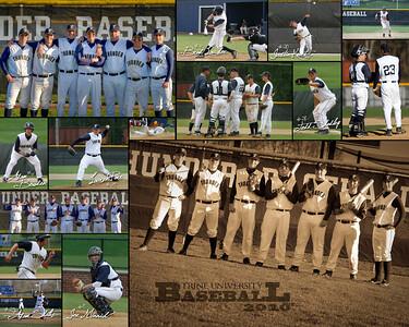 Baseball Collage 2010
