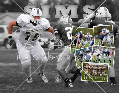 Bryce Sims Collage 2010