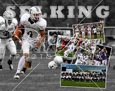Aaron Selking Collage 2010