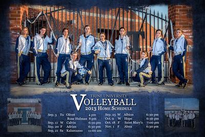 2013 VB Poster Rear