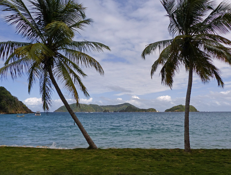 42  Tropical beach beauty, Tobago