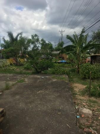 Trinidad.RAPP.CAPs