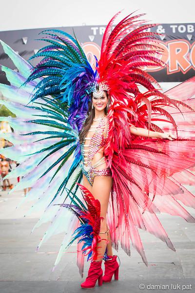 Socadrome Carnival 2014 in T&T