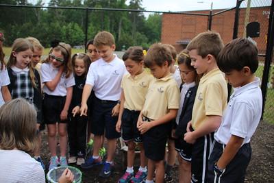 2nd Grade Butterfly Release