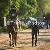 20191027 - TCA - Equestrian Competition  034 Edit