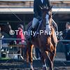 20191027 - TCA - Equestrian Competition  092 Edit