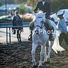 20191027 - TCA - Equestrian Competition  015 Edit