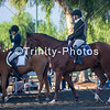 20191027 - TCA - Equestrian Competition  009 Edit