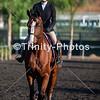 20191027 - TCA - Equestrian Competition  048 Edit