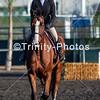 20191027 - TCA - Equestrian Competition  047 Edit