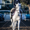 20191027 - TCA - Equestrian Competition  021 Edit