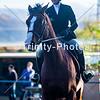 20191027 - TCA - Equestrian Competition  101 Edit