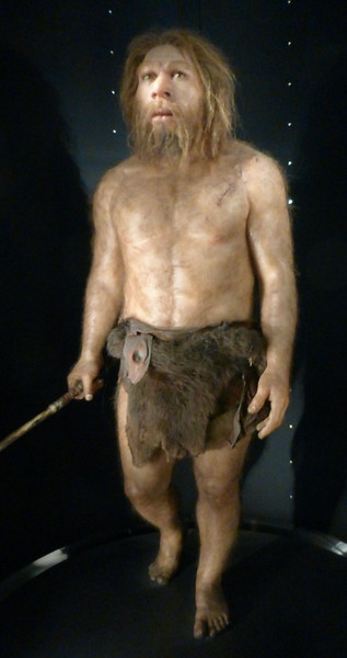 Burgos Museum of Human Evolution