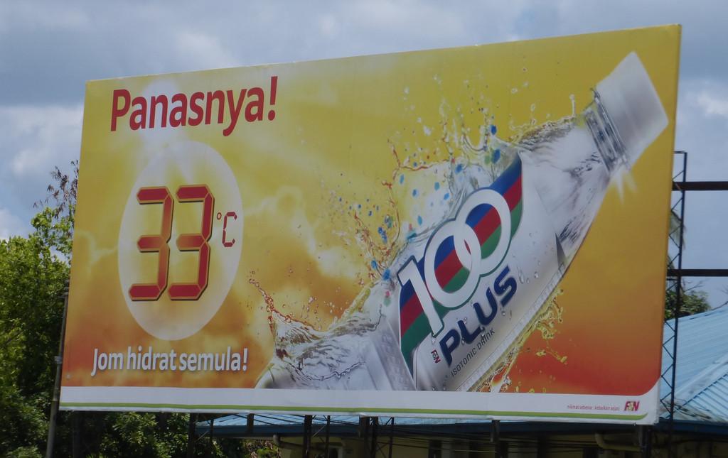 Best Drink in Borneo