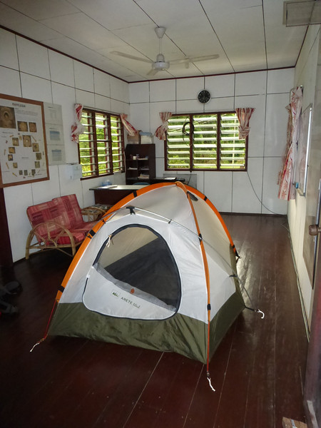 Camping Out in a Tent Inside the Ranger's Station to Avoid the Swarms of Mosquitos